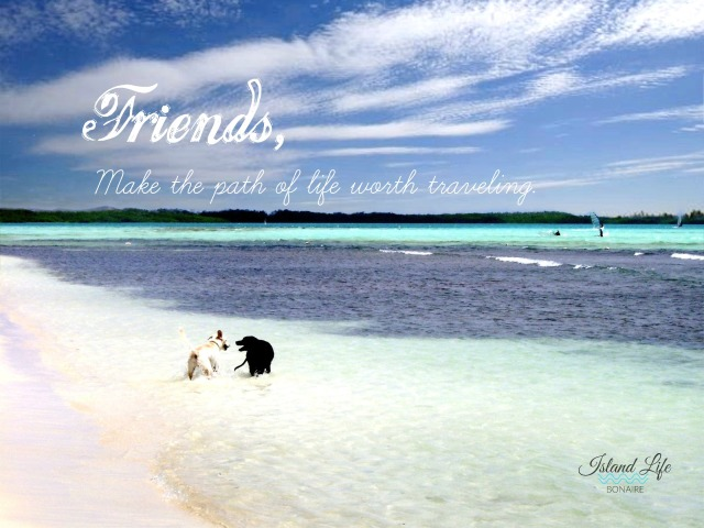 Friends make the path of life worth traveling.