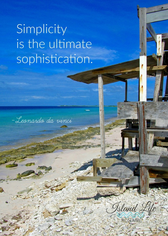 Simplicity is the ultimate sophistication.