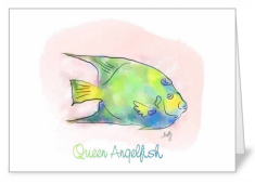 queen-angelfish